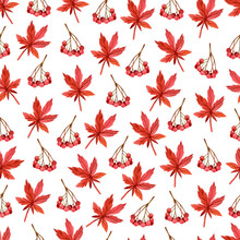 Seamless Autumn Pattern With Maple Leaves And Viburnum Painted In Watercolor.