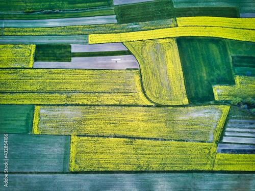 Pole rzepaku - widok z drona - krajobraz - fototapety na wymiar