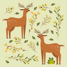 Two Deer In Floral Pattern Vector Illustration