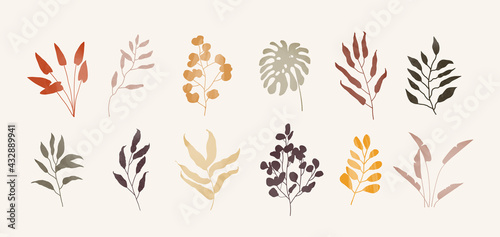 Foto Set of trendy plants with different textures illustration in natural colors