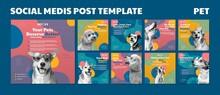 Cute Pet Social Media Post Template