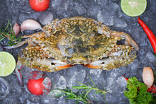 Seafood Crab On Ice For Cooking Food In The Restaurant, Fresh Raw Blue Swimming Crab Ocean Gourmet With Herb Spices Lemon And Rosemary