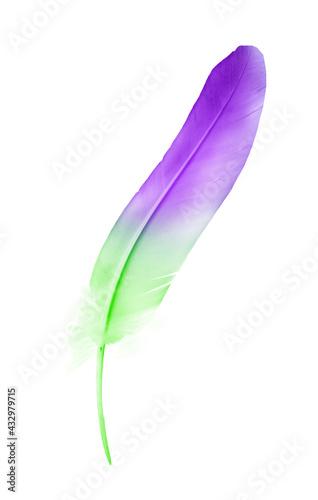 Naklejka premium Beautiful color feather isolated on white background