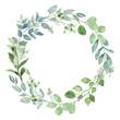 Leinwandbild Motiv Wreath with eucalyptus, watercolor leaves. Hand painting botanical floral frame. Leaf illustration isolated on white background.