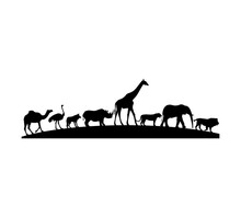 Camels In The Desert Animals Line Up Color Black White Background Illustrations