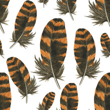 Brown And Orange Striped Feather In Seamless Pattern On White Background. Watercolor Hand Drawing Illustration. Realistic Painting Woodcock Plume For Wallpaper.