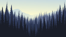 Mountain Landscape With Pine Forest Foggy Mist