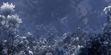 Colorful Fantasy Forest. Imaginary Plants. Dense Haze. Vivid Concept Art Scenery. 2d Illustration.