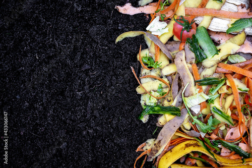 Fotomural biodegradable kitchen waste on soil