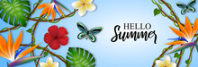 Hello Summer Banner With Tropical Flowers, Leaves And Butterflies