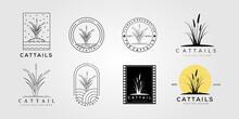 Set Cattail Reed Logo Vector Illustration Design