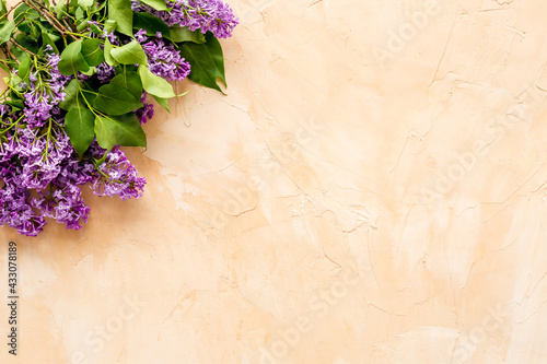 Flat lay of spring lilac flowers. Purple flowers with copy space, top view - fototapety na wymiar