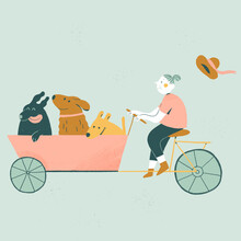 Granny Riding A Cargo Bike And Carrying Her Three Dogs