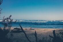 Descanso A Orillas Del Mar