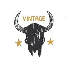 Bull Or Cow Skull, Animal Head Graphic Print. T-shirt Typography Design. Vector Illustration
