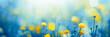 Leinwandbild Motiv spring meadow with flowers