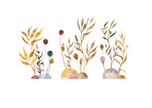 Watercolor Hand Drawn Illustration Of Three Sets With Plants, Branches, Simple Flowers, Leaves And Stones. Floral Illustration. Dry Grass. Swamp Vegetation.