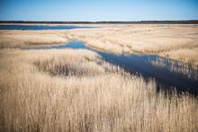 Kanieris Lake In Sunny Spring Day, Latvia