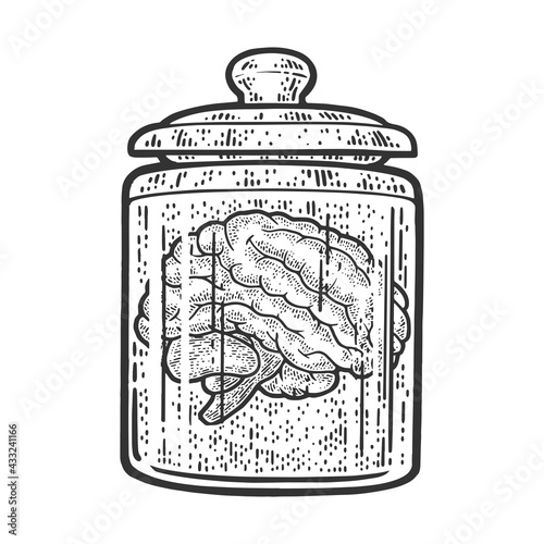 Fototapeta human brain in jar of formalin sketch engraving vector illustration. T-shirt apparel print design. Scratch board imitation. Black and white hand drawn image. obraz