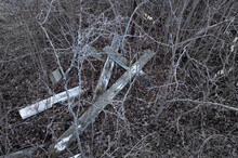 Pile Of Broken Wooden Grave Marker Crosses In Dead Looking Shrubs And Leaves.