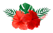 Red Hibiscus Flower With Palm Leaves Isolated On White Background. Vector Illustration