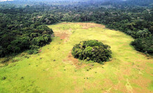 Gabon, Aerial View Of Lush Green Jungle OfLope National Park