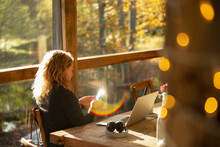 Businesswoman With Smart Phone Working In Sunny Cafe
