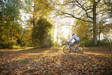 Carefree Young Woman Riding Bicycle Through Autumn Leaves In Park