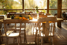Autumn Pumpkins And Gourds On Table In Sunny Rustic Restaurant