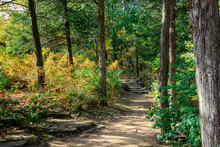 Forest Trail At Roman Nose State Park, Watonga, Oklahoma, USA