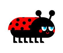 Ladybug Cartoon Isolated. Ladybird Vector Illustration. Red Bug