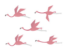 Vector Set With Flamingos. Flamingos Flying Isolated On A White Background. Hand Drawn Illustration.