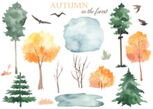 Watercolor Set With Autumn Trees, Bushes, Pines, Fir Trees, Puddle, Grass, Migratory Birds