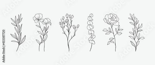 Obraz na plátně Minimal botanical hand drawing design for logo and wedding invitation