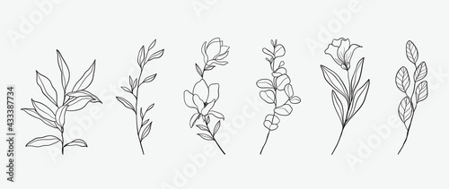 Canvas-taulu Minimal botanical hand drawing design for logo and wedding invitation