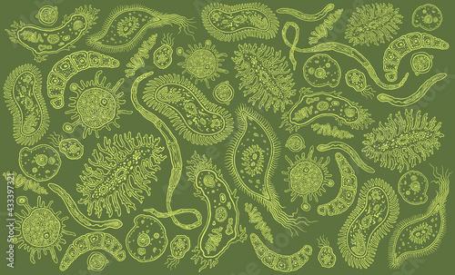 Obraz na plátně Microbes
