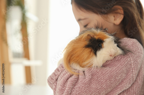 Little girl with guinea pig at home, space for text. Childhood pet - fototapety na wymiar