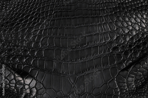 Photographie Abstract background of seamless crocodile black leather texture