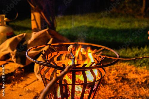 campfire; toasting marshmallows Fototapet
