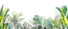 Seamless Tropical Border With Green Palm Leaves And Trees.