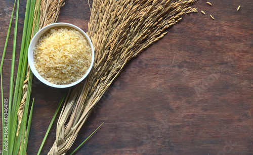 Fotografia Unpolished or brown jasmine rice in a white bowl and paddy rice on brown wooden background