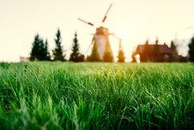 Green Grass Close-up. Old Wooden Windmill On The Background.