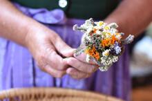 Traditionelle Kräuterweihe Und Kräuterbuschen Tag Mariä Himmelfahrt (15. August) - Traditional Herb Consecration And Herb Bush Day Of The Assumption (August 15).