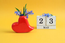 Calendar For May 23 : A Bouquet In A Heart-shaped Vase With Blue Flowers And The Number 23 On Cubes, The Name Of The Month Of May In English, Yellow Background
