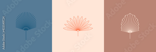 Photo Set of Abstract Palm Leaves in a Trendy Minimal Linear Style
