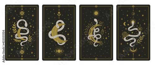 Fotografie, Obraz Magical snakes tarot cards