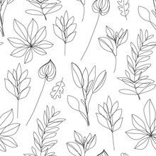 Vector Flower Linear Simpless Background, Roses With Leaves, Ornament, Pattern With Black Single Contour Line On White Background In Hand Drawn Style, Plant