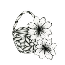 Black Drawing Of  A Basket With Flowers Isolated On White, Vintage Hand Drawn Floral Illustration, Rustic Floral Decoration With Basket