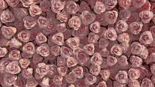 Beautiful, Vibrant Wall Background With Roses. Elegant, Floral Wallpaper With Red, Colorful Flowers. 3D Render