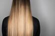 Leinwandbild Motiv Rear view of long hair with balayage. Soft focus